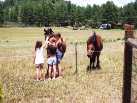 Brianna, Tiarra and Sierra saying hello to our neighbor's horses.